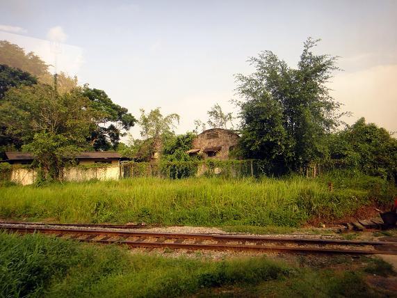 11 農園の廃墟.JPG