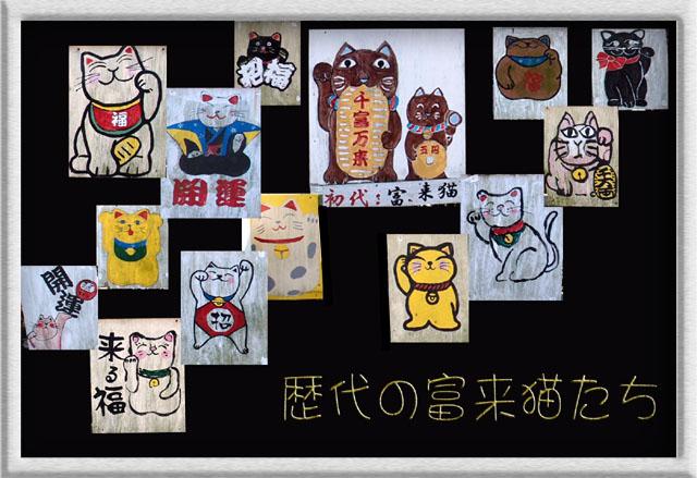 12 富来猫たち.jpg