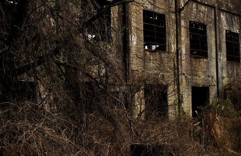 12 廃墟らしい廃墟です.JPG