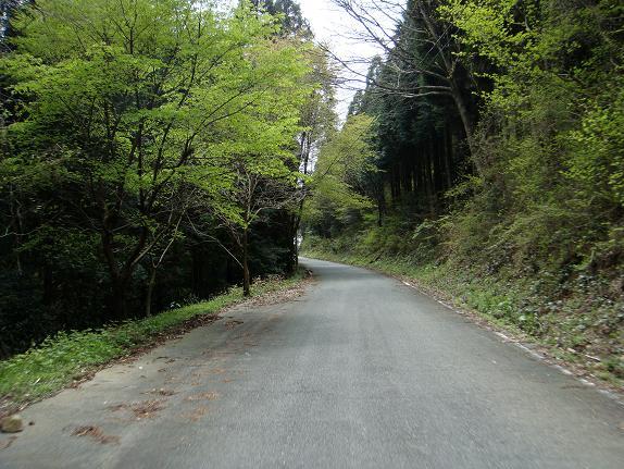12 林道は続くよどこまでも.JPG