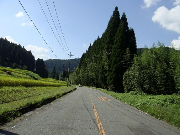 13 椎葉へ抜ける国道へ.JPG