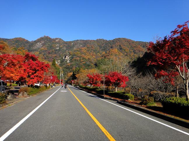 14 九州なら大渋滞するような風景です.JPG
