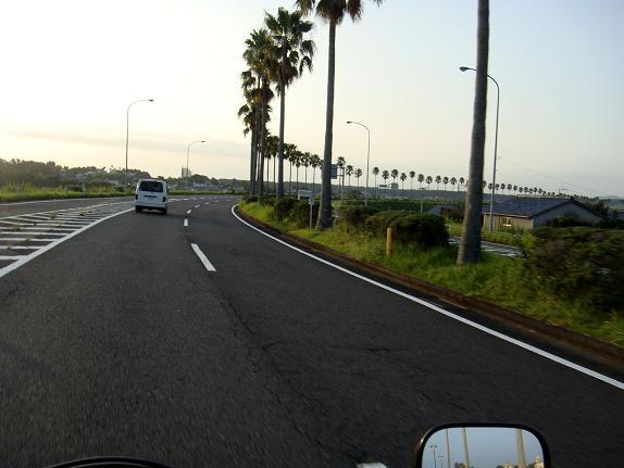 14 宮崎らしい道路.JPG