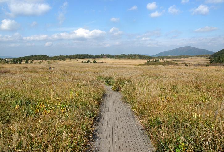 14 湿原です.JPG