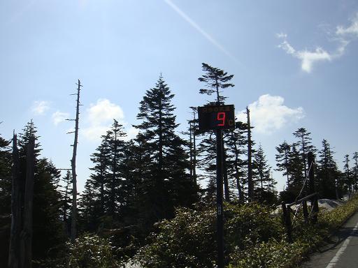 15 気温は低いけど日差しは初夏なので気持ちが良いです.JPG