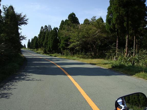 17登山道の終盤.JPG