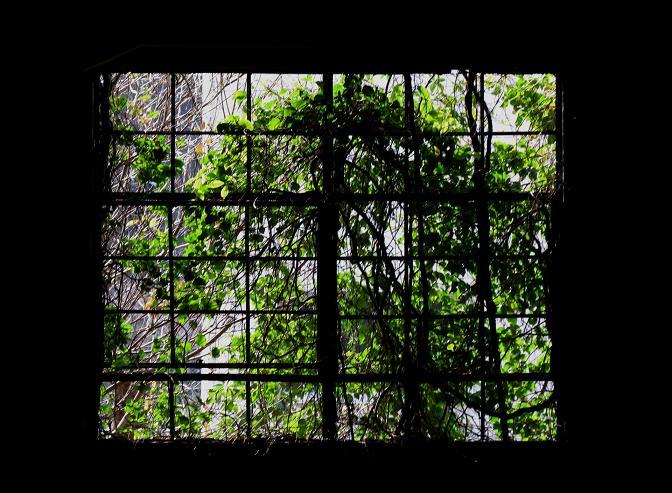 18 窓.JPG
