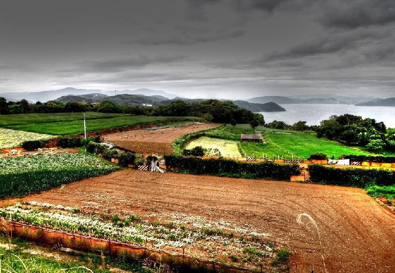 19 半島からの眺めです.JPG