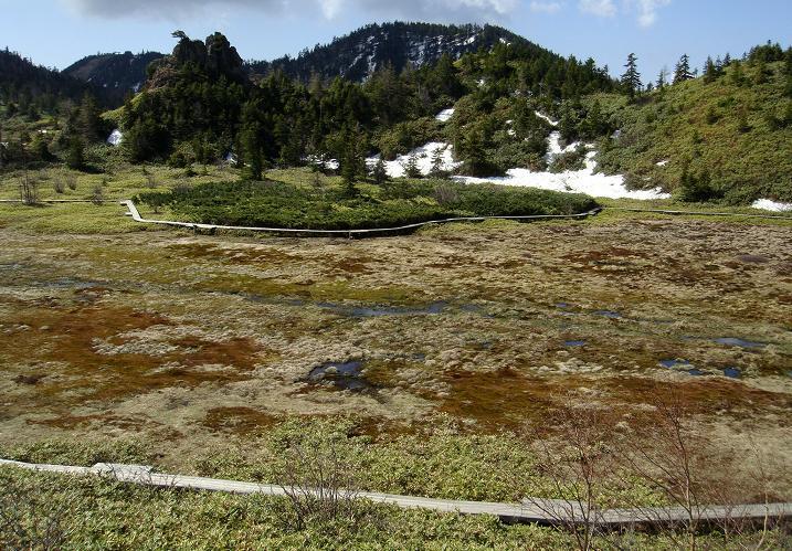 20 湯釜の前の湿原.JPG