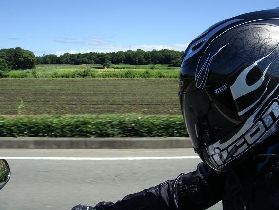 21 モダンモジャリスムカラーのヘルメット.JPG