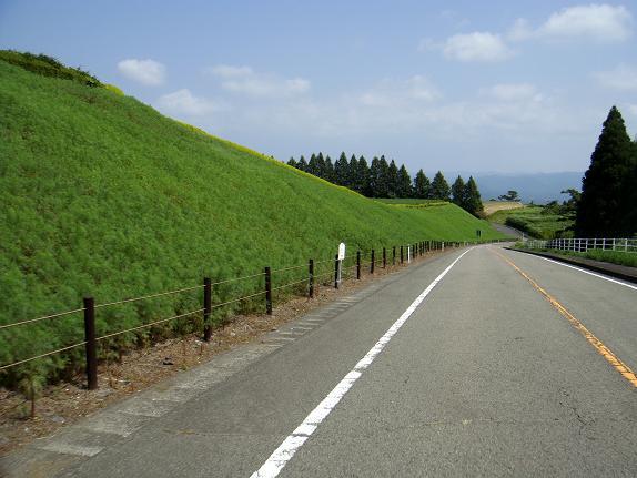 22 生駒高原のコスモスは3輪咲いてました.JPG