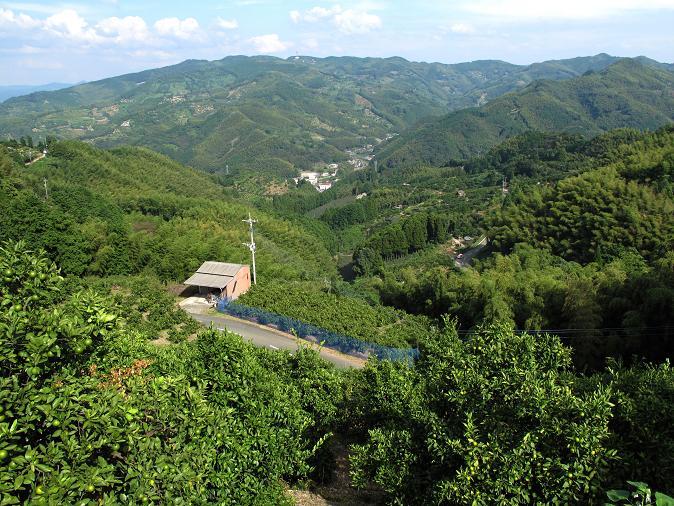 23 オレンジロードからの眺め2.JPG