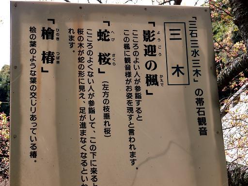 2 三木の謎.JPG
