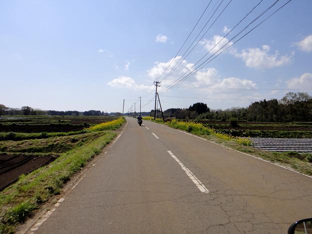 33荻周辺のお気に入りの道.JPG