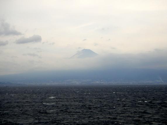 34 駿河湾から富士山が見えました.JPG