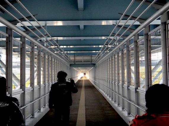 39 誰もいない橋の下を探検中.JPG