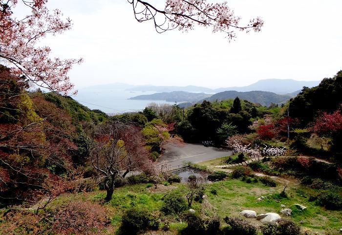 3 寺からの眺めです.JPG