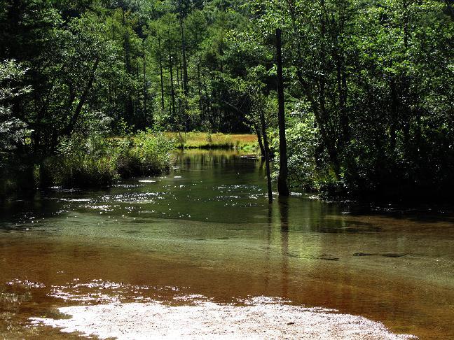 6 そのまま川に寝そべって水が飲めそうです.JPG