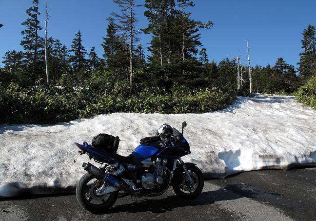 6 九州人は雪を見るとはしゃぎます.JPG