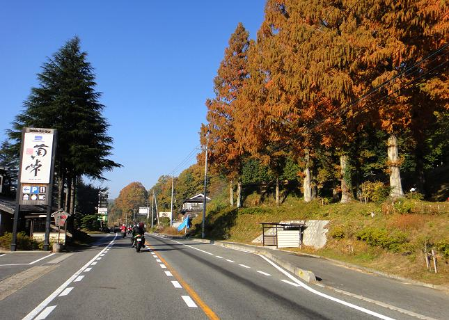 7 紅葉が綺麗なルートです.JPG