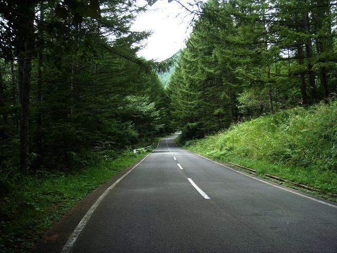 8 素適な峠道.JPG