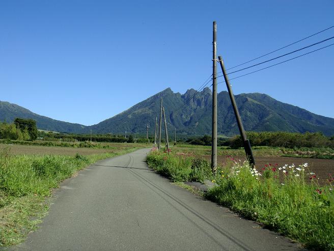 9 僕の好きなローカル道路.JPG