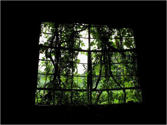 かつての窓.JPG