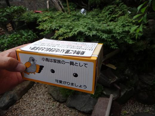 こんな箱に入っています.JPG