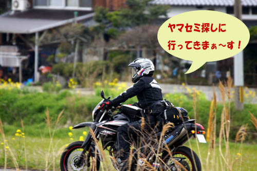 ゆうさんお見送り.jpg
