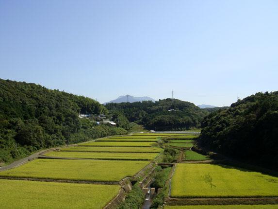 グリーンロードから普賢岳.jpg