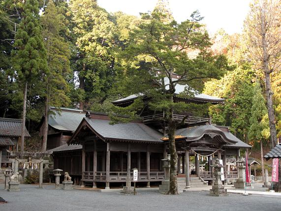 巨木に囲まれた龍神八幡宮.JPG