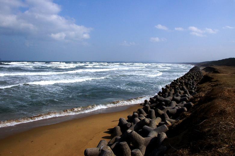 波津の海岸.JPG