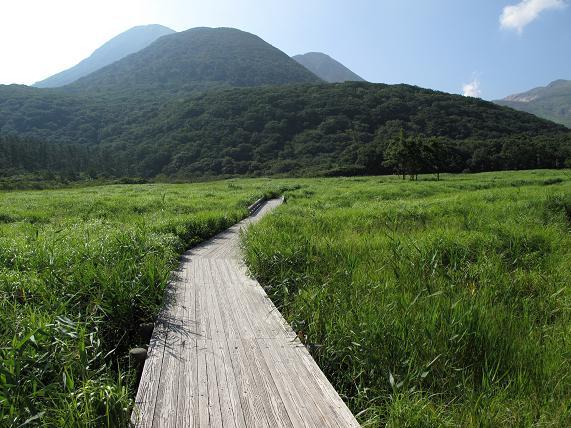 湿原の中はこの木の歩道の上からでてはダメ.JPG