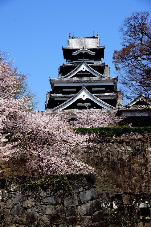 熊本城です.JPG