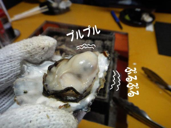 豊前の牡蠣.jpg