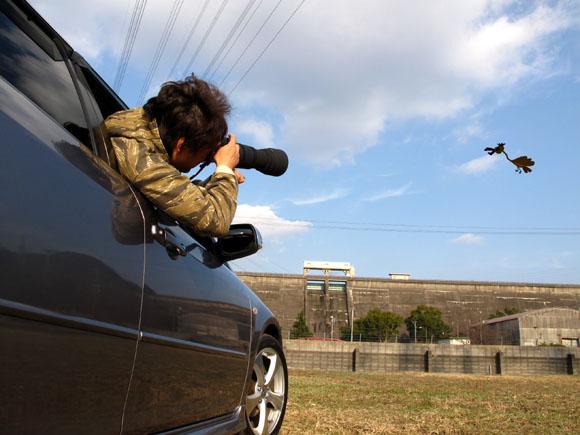 車から撮るのが有効です.jpg