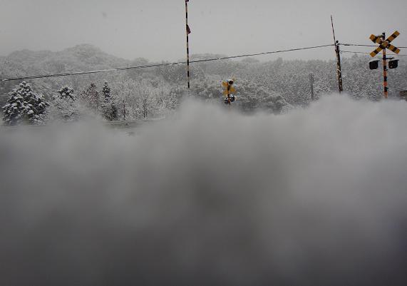 雪の中にめり込んだカメラから.JPG