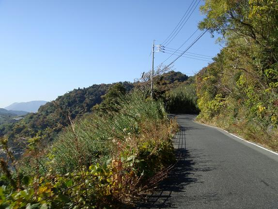 20、島の尾根沿いの道はこんなん.JPG