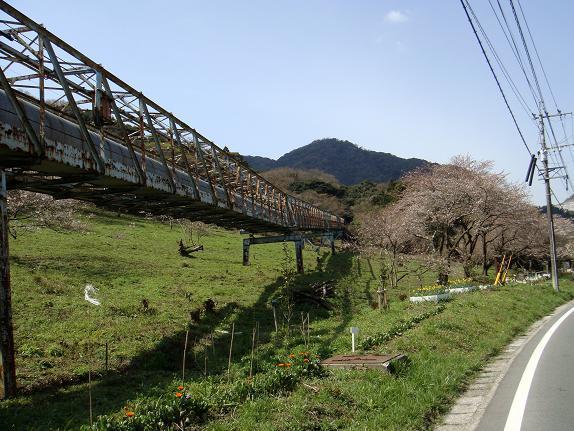 5殿川から平尾台へ.JPG