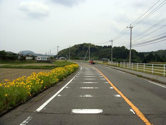 11 薩摩路を行く.JPG