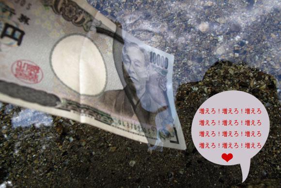 15 諭吉倍増計画.jpg