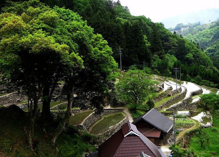 16 日本の風景.JPG