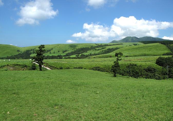6 産山の草原.JPG