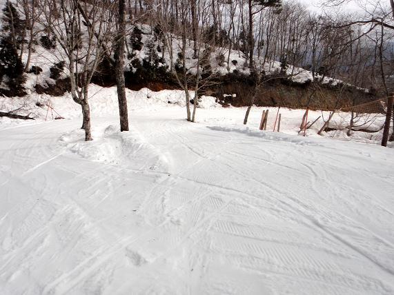 7 大好きな林道コース.JPG
