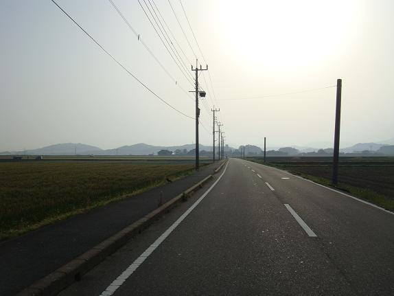 7 麦畑の道.JPG