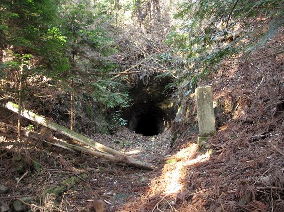 こんな山奥にトンネルだ!.JPG