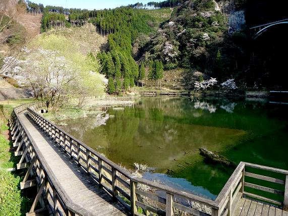 ダムの下流.JPG