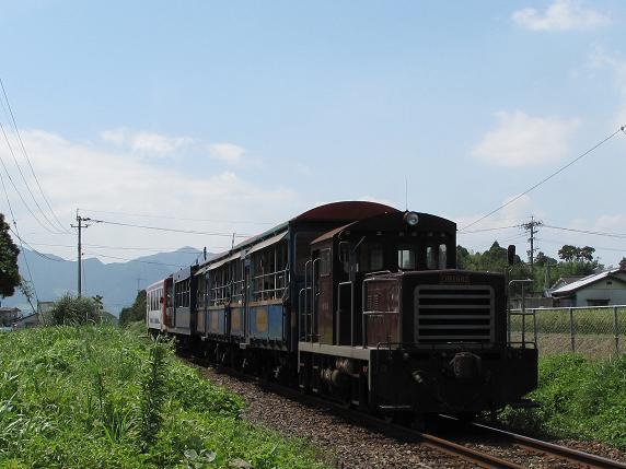 トロッコ列車でした.JPG