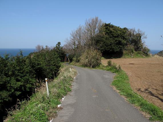 島の道.JPG