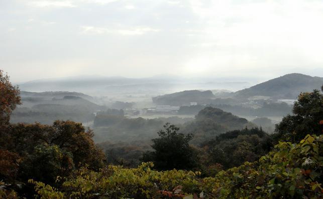 朝の犀川.JPG